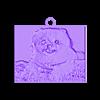lithopane_new_20140910-24058-1vcq9jz-0.stl Télécharger fichier STL gratuit Ma Lithophane personnalisée - Cute Cooper • Objet à imprimer en 3D, Jameschu