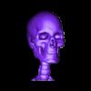 head_skel.stl Télécharger fichier STL gratuit Squelette humain • Objet imprimable en 3D, Cornbald